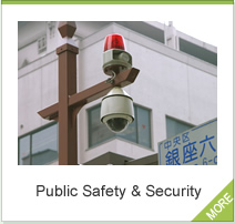 Public Safety & Security